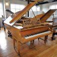 Bechstein Model B Rosewood Boudoir Grand Piano By Sherwood Phoenix Pianos 3