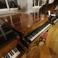 Broadwood Barless Rosewood Grand Piano by Sherwood Phoenix Pianos 5