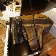 Ibach Twin Pillar Leg Black Baby Grand Piano By Sherwood Phoenix Pianos 9