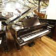 Bluthner Aliquot Boudoir Grand Piano Black At Sherwood Phoenix Pianos 3