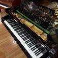 Bechstein Model C Boudoir Grand Piano Black At Sherwood Phoenix Pianos 6