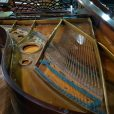 Bechstein Model B Boudoir Grand Piano Rosewood At Sherwood Phoenix Pianos 4
