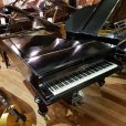 Bechstein Model V Boudoir Grand Piano Restored Black At Sherwood Phoenix Pianos 10