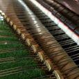 Bechstein Model V Boudoir Grand Piano Restored Black At Sherwood Phoenix Pianos 9